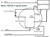 3 Speed Table Fan Wiring Diagram Wiring Diagram for A Pedestal Fan Electrical Engineering Wiring