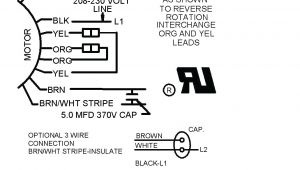 3 Wire Condenser Fan Motor Wiring Diagram A C Condenser Fan Capacitor Wiring Diagram Wiring Diagram View