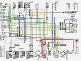 350 Warrior Wiring Diagram 1998 Yamaha Warrior Wiring Diagram Wiring Diagram Library2007 Yamaha
