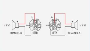 4 Pole Speakon Wiring Diagram Speakon Wiring Diagram Wiring Diagrams Global