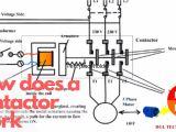440 Volt Wiring Diagram Dpbf Contactor Wiring Wiring Diagram