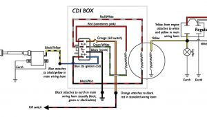 5 Pin Cdi Box Wiring Diagram 5 Pin Cdi Box Wiring Wiring Diagram for You