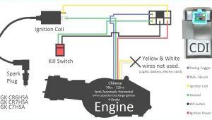 5 Pin Cdi Wiring Diagram Dc 5 Wire Cdi Diagram Wiring Diagram Centre