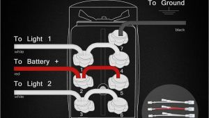 5 Prong toggle Switch Wiring Diagram 5 Pin toggle Switch Wiring Diagram Wiring Diagram Networks