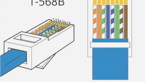 586b Wiring Diagram 586b Wiring Diagram Wiki 4k Home In 2019 Ethernet Wiring Cat6