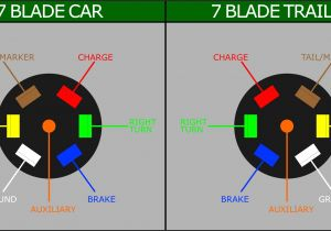 7 Point Trailer Plug Wiring Diagram Reese Wiring Diagram Wiring Diagrams