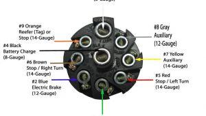 9 Pin Trailer Plug Wiring Diagram Pollak 9 Pole Round Pin Trailer socket Vehicle End Pollak