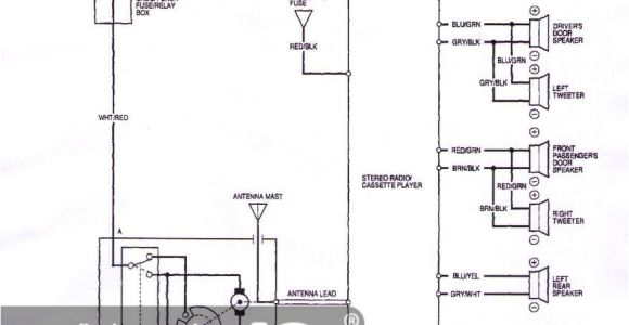 94 Integra Radio Wiring Diagram Acura Integra 92 Wiring Diagram Wiring Diagrams Value