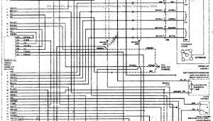 95 Civic Wiring Diagram Honda Engine Wiring Diagram Wiring Diagram Show