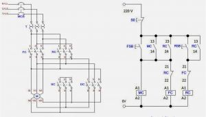 Ac Motor Starter Wiring Diagram 3 Phase Starter Wiring Diagram Wiring Diagram Database