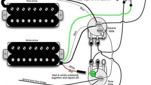 Acoustic Guitar Pickup Wiring Diagram B Guitar Two Pickup Wiring Diagram Wiring Diagram with
