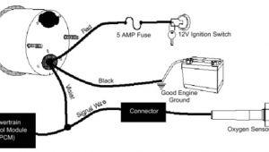 Autometer Gas Gauge Wiring Diagram Auto Meter Fuel Gauge Wiring Diagram Wiring Diagram Perfomance