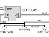 Baldor Single Phase Motor Wiring Diagram 1 2 Hp Electric Motor Wiring Diagram Wiring Diagram Technic