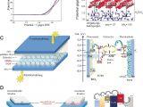 Best Free Wiring Diagram software Schwarzer Phosphor Neu Entdeckt Vom Volumenmaterial Zu