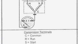 Beverage Air Mt27 Wiring Diagram Beverage Air Mt27 Wiring Diagram Best Of Beverage Air Refrigerator