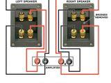 Bi Amp Speaker Wiring Diagram Jak Dziaa A Bi Wire I Bi Amp Baza Wiedzy