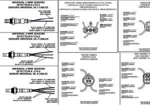 Bosch 5 Wire Wideband O2 Sensor Wiring Diagram Bmw Oxygen Sensor Wiring Diagram Wiring Diagram Database