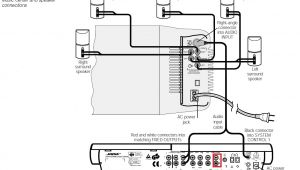 Bose Acoustimass 6 Wiring Diagram Bose 501 Wiring Diagram Pro Wiring Diagram
