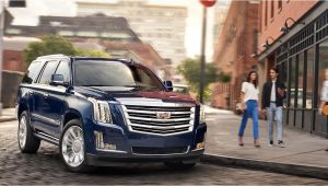 Cadillac Dealers In Chicago Shirey Cadillac In Oak Lawn Your Merrillville In Chicago and