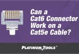 Cat 5e Vs Cat 6 Wiring Diagram Can A Cat6 Connector Work On A Cat5e Cable Platinum toolsa