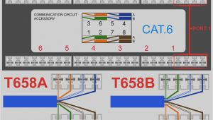Cat 5e Wiring Diagram Keystone Wiring Diagram Wiring Diagram Mega