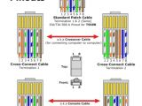 Cat5 Poe Wiring Diagram Cat5e Module Wiring Diagram Wiring Diagram