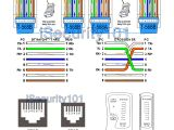 Cat5 to Cat 3 Wiring Diagram Rj45 Cat5e Wiring Diagram Straight Wiring Diagram Fascinating