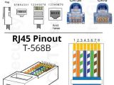 Cat5e Straight Through Wiring Diagram Ty 8962 to Rj45 Connector Cat 6 Wiring Diagram All Image