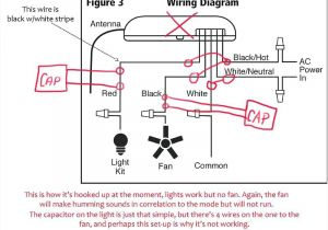 Ceiling Fan Diagram Wiring Hunter Fans Wiring Diagram Best Wiring Diagram