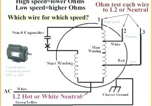 Ceiling Fan Wiring Diagram with Capacitor Hampton Bay Ceiling Fans Wiring Instructions Terrific Bay