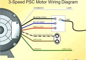 Century Ac Motor Wiring Diagram 115 230 Volts 115 Volt Ac Motor Wiring Wiring Diagram Technic