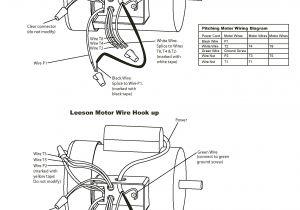 Century Ac Motor Wiring Diagram 115 230 Volts Reversible Electric Motor Wiring Diagram Wiring Diagram Technic