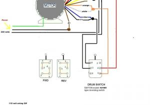 Century Electric Motors Wiring Diagram Century Ac Motor Wiring Wiring Diagram Ops
