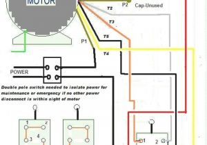Century Electric Motors Wiring Diagram Dayton Electric Motor 115 230v Single Phase Wiring Wiring Diagram