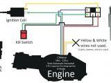 Chinese atv Cdi Box Wiring Diagram 49cc Wiring Diagram Pro Wiring Diagram