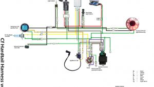 Chinese atv Wiring Diagram Wiring Diagram for 125cc atv Wiring Diagram Inside