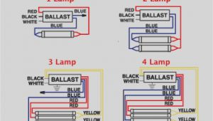 Circline Ballast Wiring Diagram Ballast Wiring Diagram T8 Wiring Diagram User