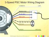 Condenser Motor Wiring Diagram 4 Wire Fan Motor Wiring Diagram My Wiring Diagram