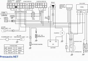 Coolster 110 atv Wiring Diagram 21v21d 3 Way Switch Wiring Zongshen 110 atv Wire Diagram Hd