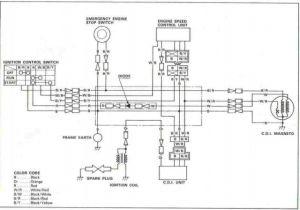 Coolster 110 atv Wiring Diagram Coolster Chinese 110cc atv Wiring Diagram Kuiyt Www1