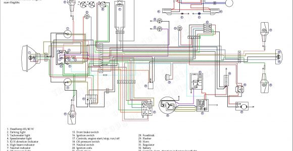 Coolster 110cc Wiring Diagram atv Turn Signal Wiring Diagram Wiring Diagram Paper