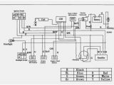 Coolster atv Wiring Diagram atv Switch Wiring Wds Wiring Diagram Database