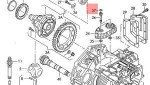 Corrado Wiring Diagram Genuine O Ring Vw Beetle Corrado Eurovan Golf R32 Gti Rabbit Jetta