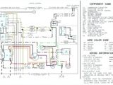 Dayton 6a855 Wiring Diagram with Hoist Contactor Wiring Diagram Brandforesight Co