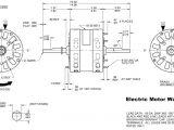 Dayton Dc Speed Control Wiring Diagram Md 3105 Speed Motor Wiring Diagram 20 Dayton Electric Motor