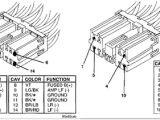 Dodge Infinity Stereo Wiring Diagram 32 2008 Dodge Ram Infinity Amp Wiring Diagram Wiring