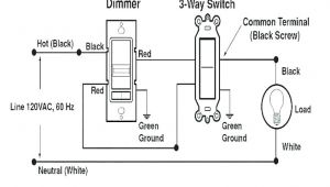 Double Pole Single Throw Switch Wiring Diagram Winning Single Pole Dimmer Switch Wiring Diagram Light Australia One