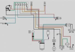 Dual Headlamp Relay Wiring Diagram Harley Dual Plug Wiring Diagrams Blog Wiring Diagram