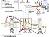 Dual Light Switch Wiring Diagram Wiring A 277 Volt Light Database Wiring Diagram