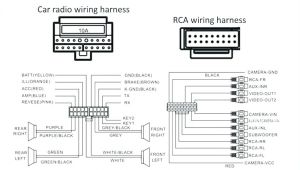 Dual Radio Wiring Diagram Wiring Diagram for Stereo Amplifier Get Free Image About Wiring
